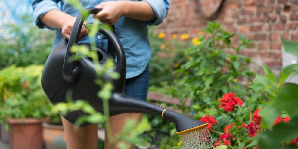Top Rated Watering Cans For Indoors & Outdoors